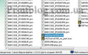 Сбросить абсорбер Canon Pixma IP1900
