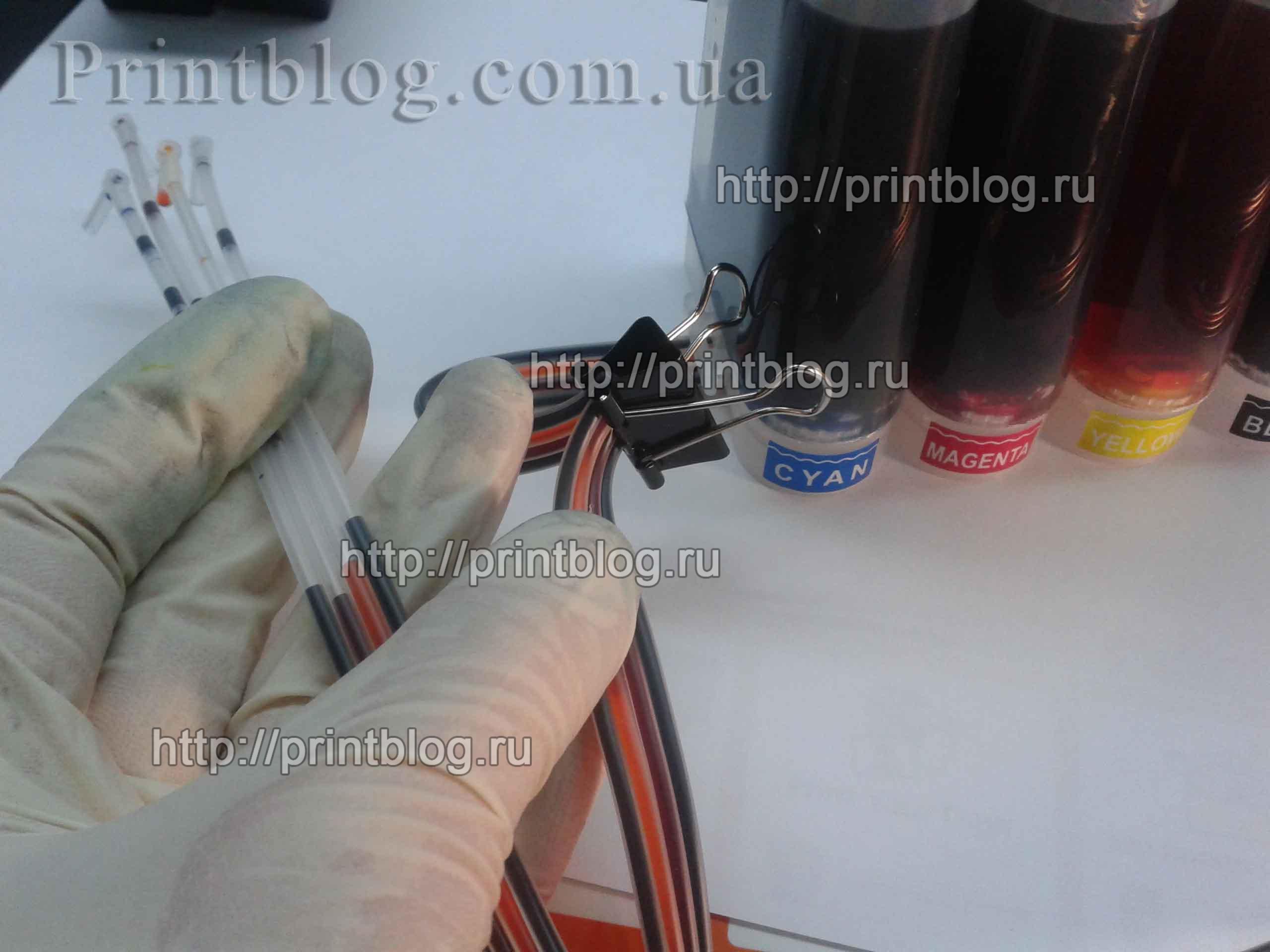 SNPCH_MG3540_1