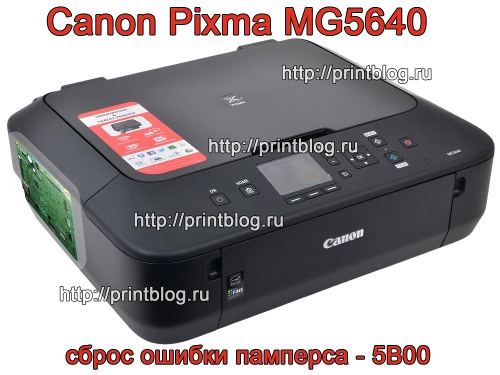 canon-mg5640-damp-flash-reset-error-5b00-preview