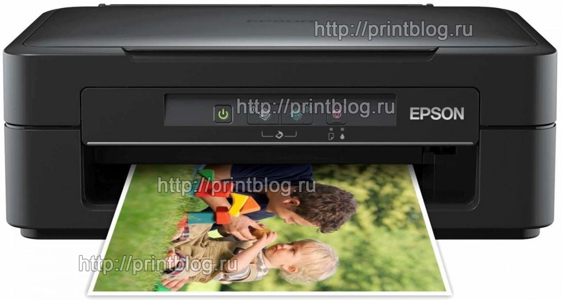 Скачать бесплатно драйвер для принтера Epson Expression Home XP-100