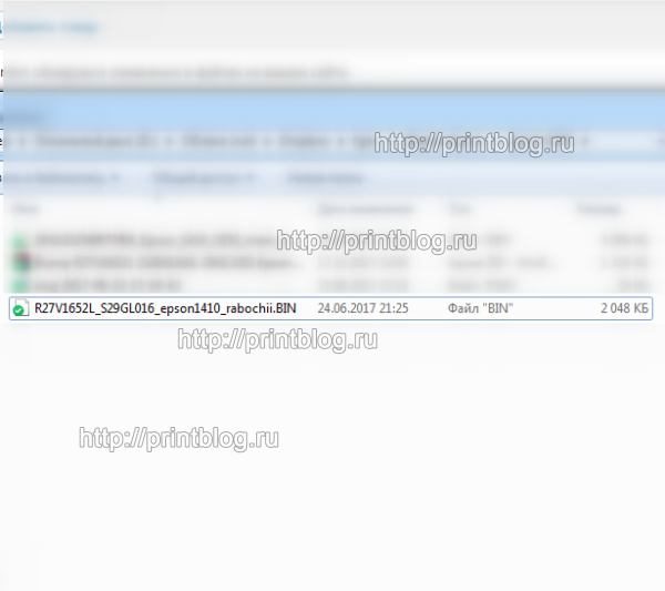 Дампы R27V1652L (S29GL016, 29GL320) от принтера Epson Stylus Photo 1410