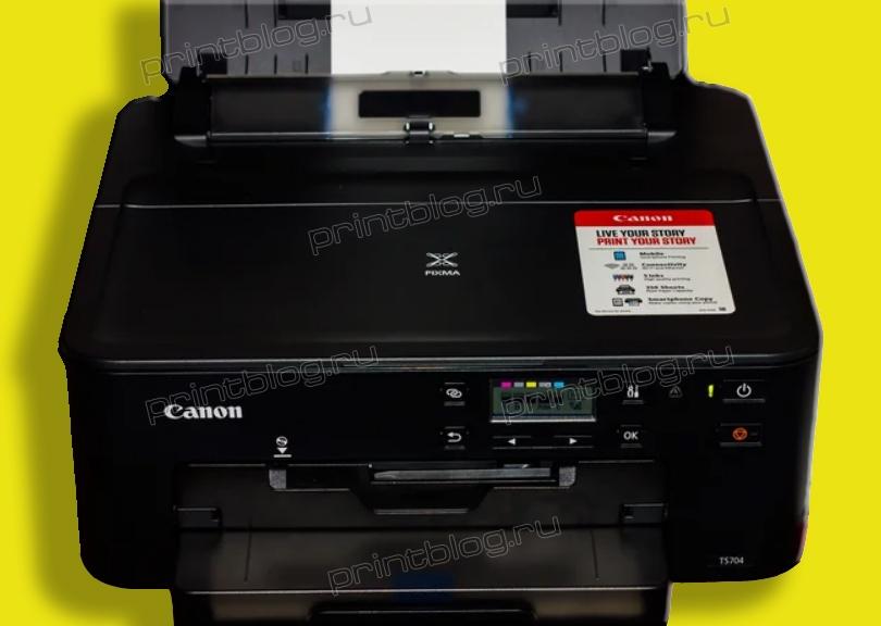 Canon PIXMA TS704, TS707 Сброс счетчика памперса (памперса, абсорбера, впитывающей прокладки), ошибка 5B00, 5B01
